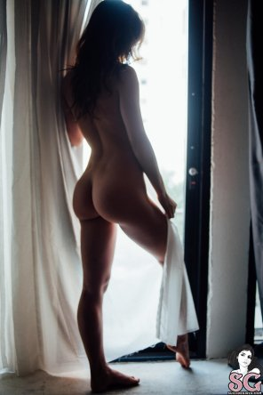 amateur photo Morning backside
