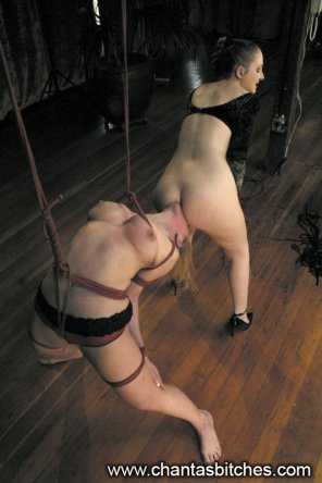 amateur photo Tied and hung up and forced to lick
