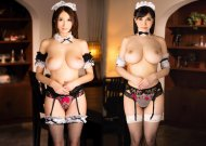The ultimate topless maid service