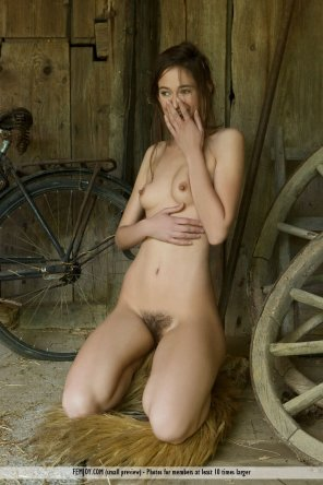 amateur photo Shy in the barn