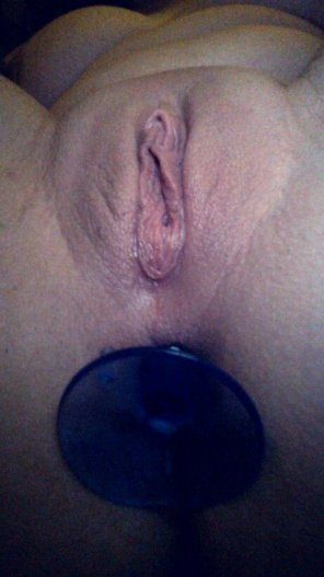 amateur photo Plugged amateur with a perfect pussy