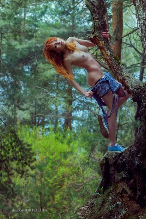 amateur photo Summer - best time for tree climbing... naked