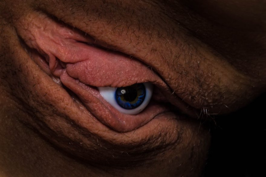 It sees you and waits. Porn Photo