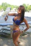 amateur photo parrot