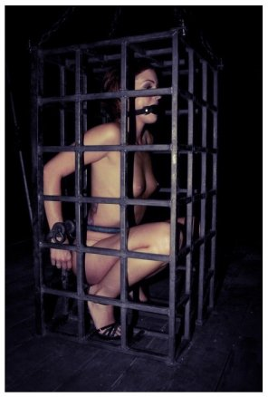 amateur photo cage belongs to this category?