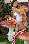 amateur photo mushroom kingdom