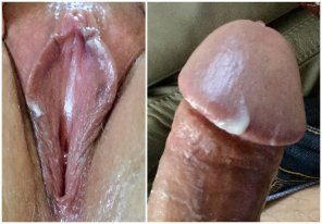 amateur photo Grooly Pussy and Cock [OC]