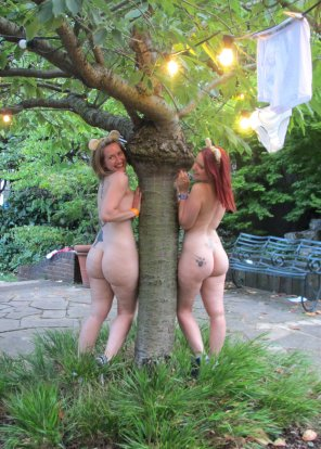 amateur photo Treehuggers