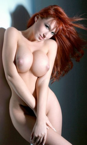 amateur photo Ginger with dream maker rack !