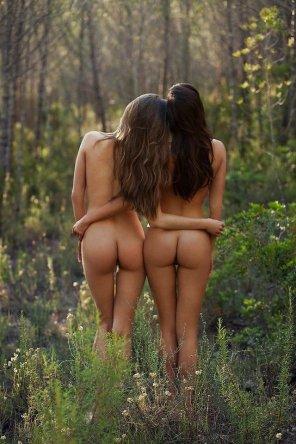 amateur photo Into the woods