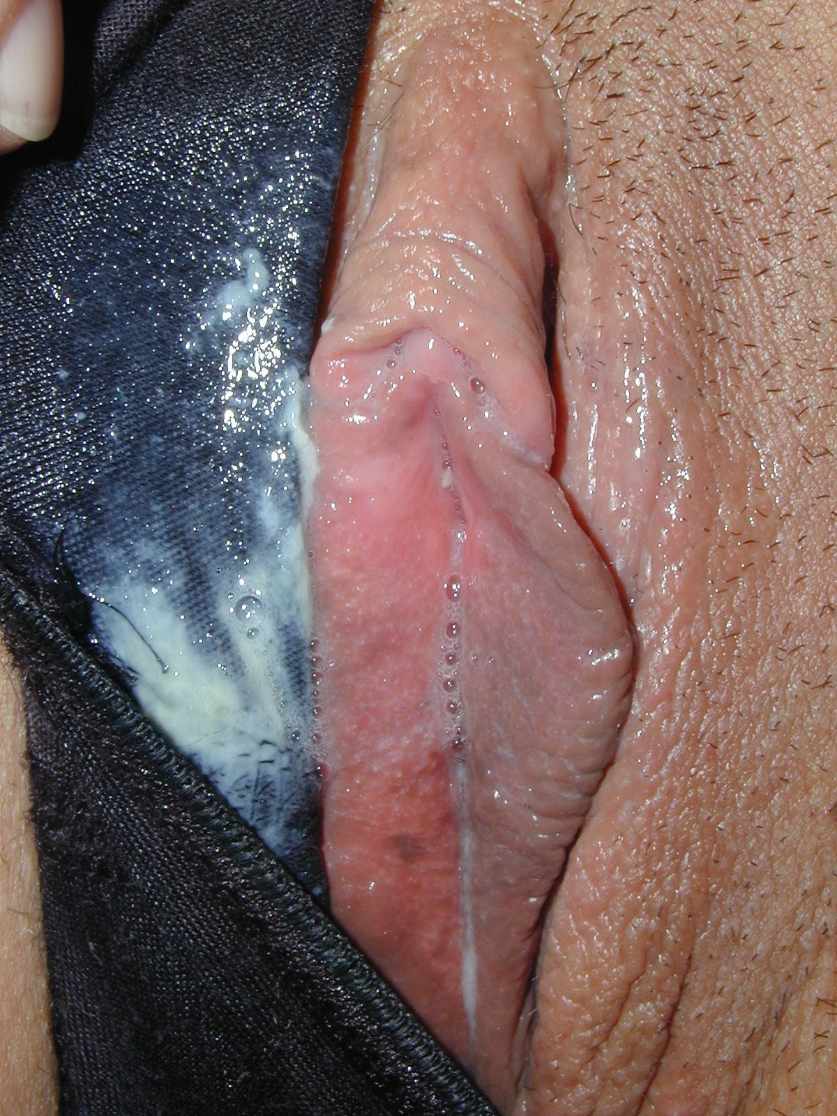 Confirm. galleries pussy porn wet tumblr speaking, opinion