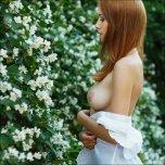 amateur photo Pretty flowers