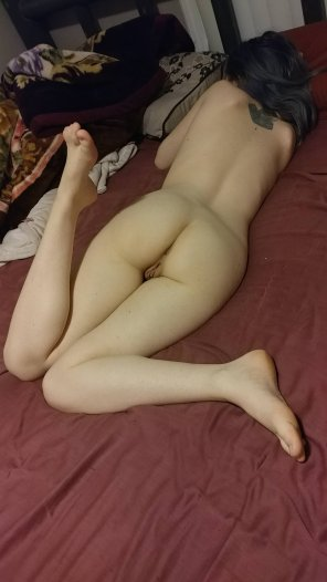 amateur photo About to take a nap [F]