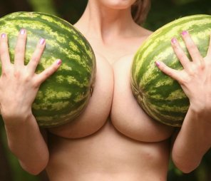 amateur photo Melons