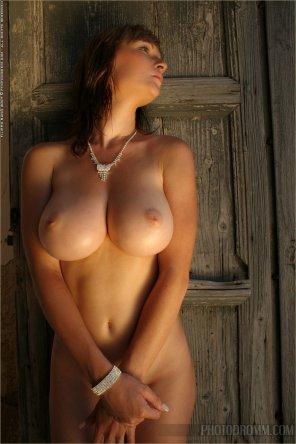 amateur photo Great tits