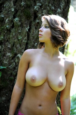 amateur photo In the woods