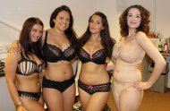 Thick lingerie hotties