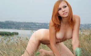 amateur photo On all fours in a field