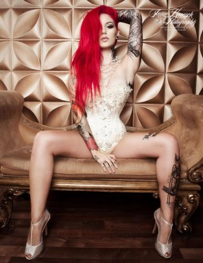 amateur photo Cervena Fox