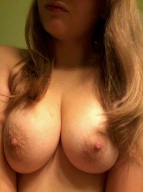 amateur photo Great tits
