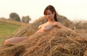 amateur photo Adorable in the Hay