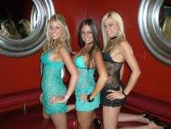 amateur photo A perfect trio