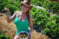 amateur photo Fresh berries?