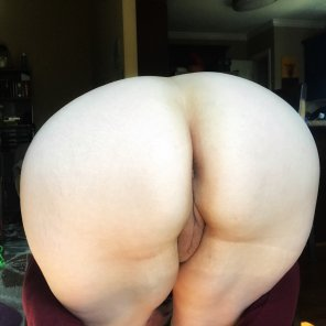 amateur photo It's hump day!