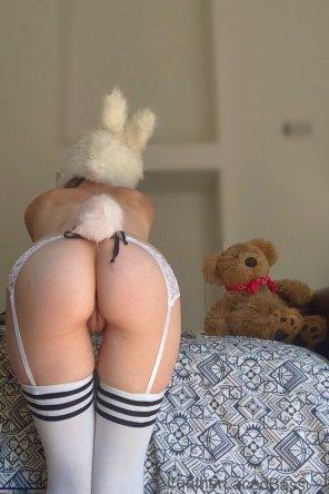 amateur photo Beautiful bunny