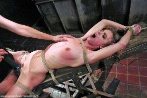 amateur photo spreadeagle on the Y shaped bench/table best sex bondage