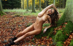amateur photo The Forest