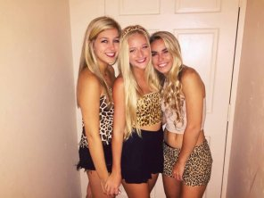 amateur photo Three Jungle Blondes