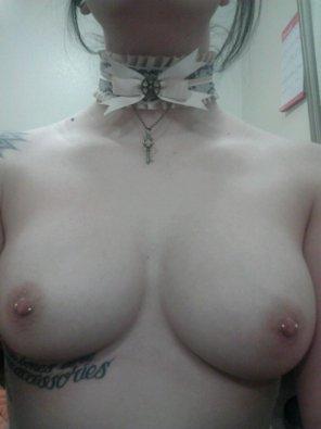 amateur photo Kitten got her collar. :3