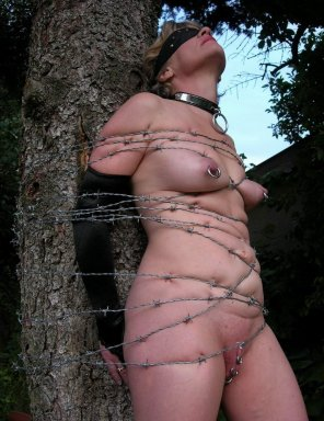 amateur photo Barbed-wire bondage.