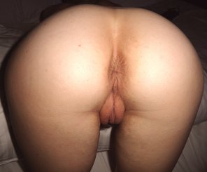 amateur photo A pic of my pussy from behind