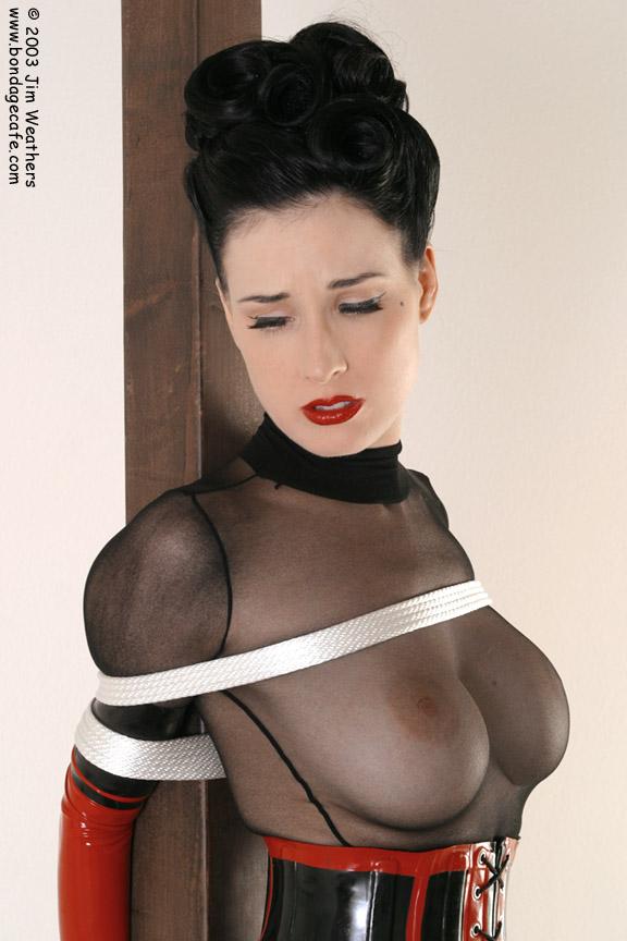 Dita Von Teese Porno