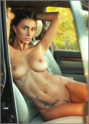amateur photo A perfect passenger