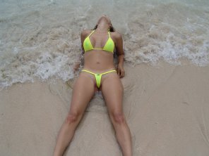 amateur photo Yellow wicked weasel.