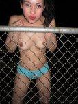 amateur photo On the fence