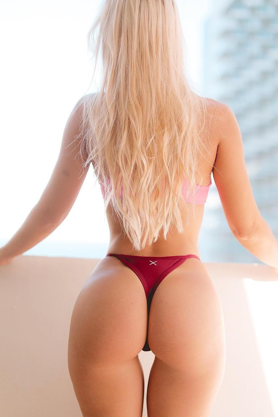 Blonde Asses – Telegraph