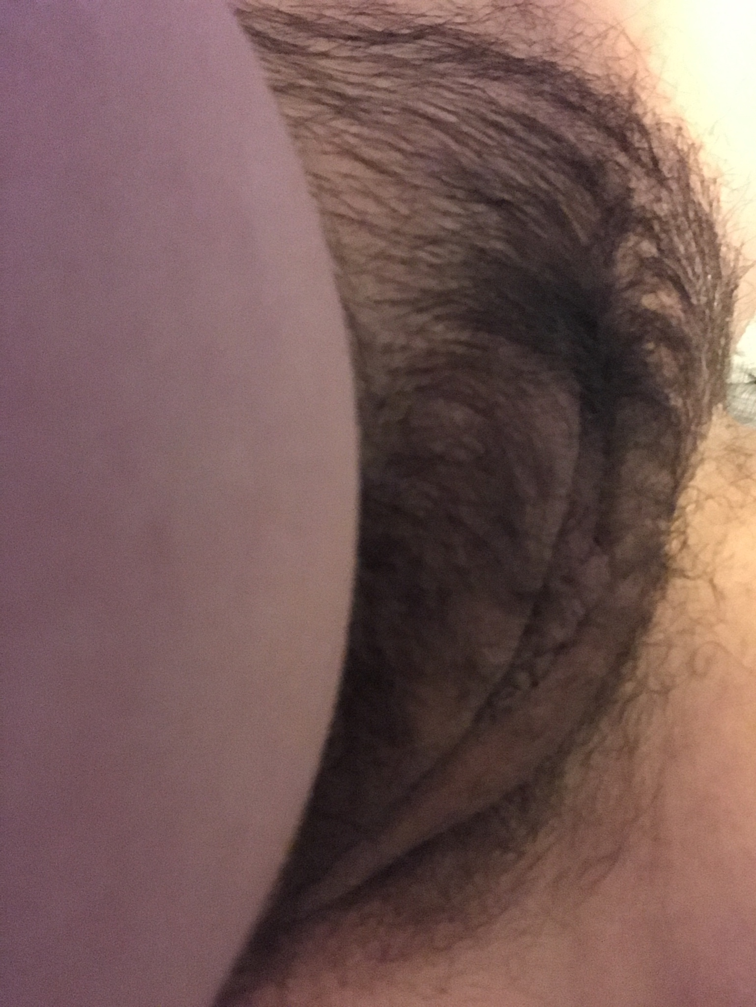 Hairy porno Hairy Girls
