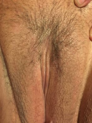 amateur photo My wife's pussy
