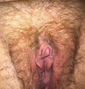 amateur photo A lil bush + an aroused pussy