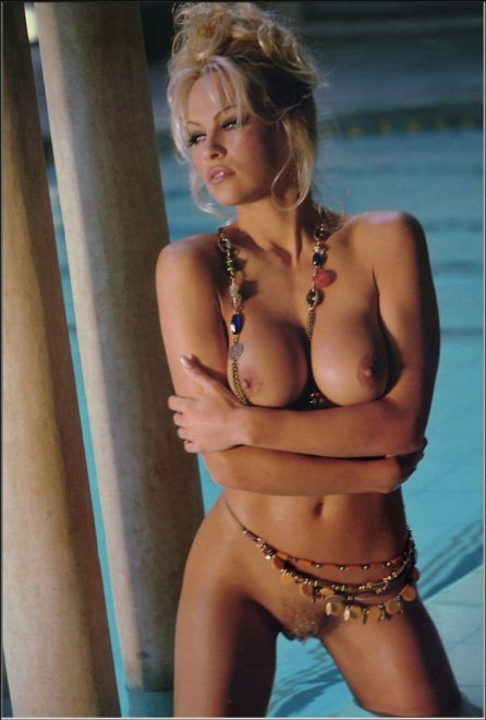 Pamela Anderson from the November 1994 issue of Playboy. Porn Photo