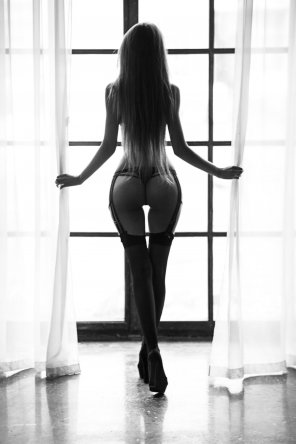 amateur photo Window Dressing
