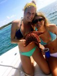 amateur photo Giant starfish