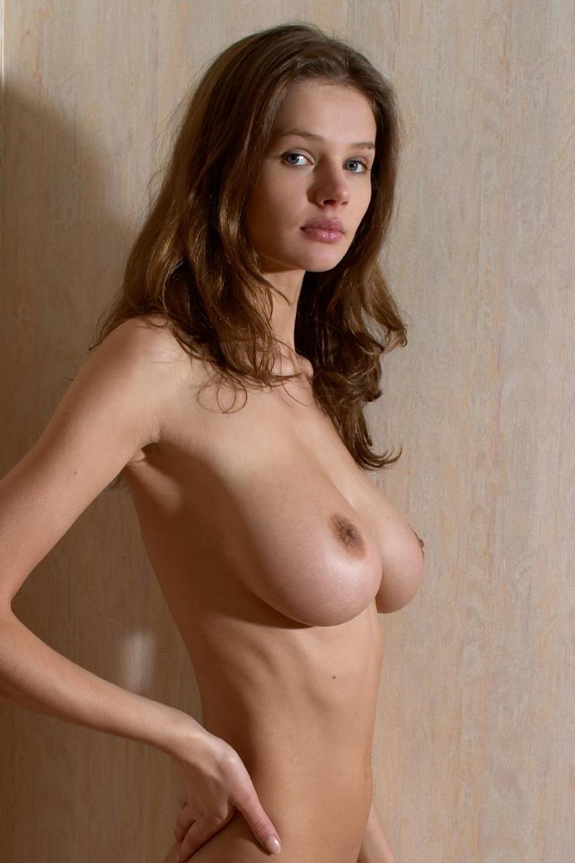 Bikini Busty Brigitte Nude Naked Png