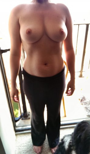 amateur photo Great tits!