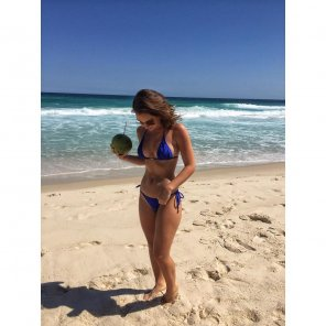 amateur photo Coconut at the beach