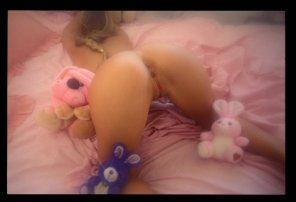 amateur photo Heather Wild's Stuffed Animals [AIC]